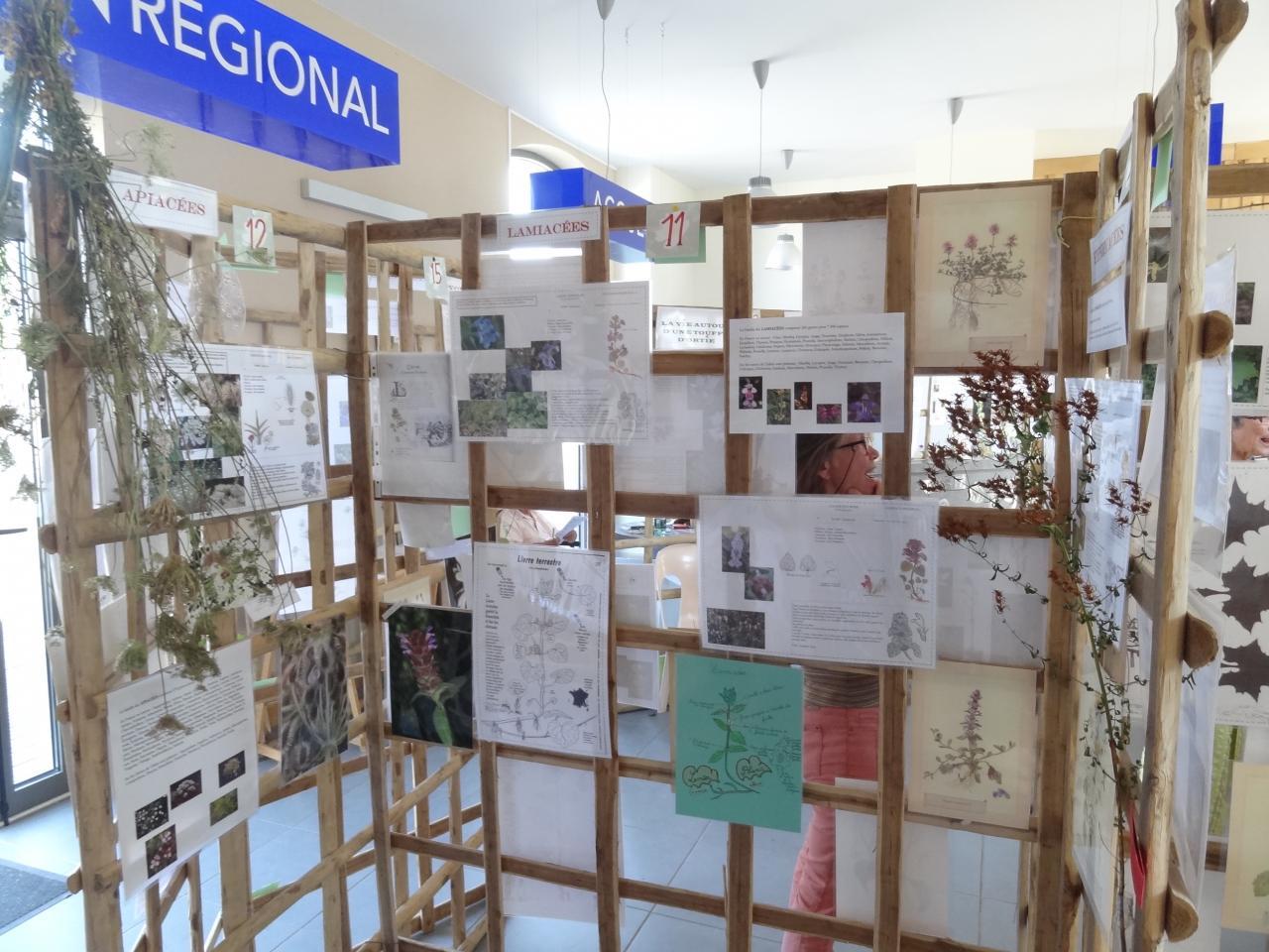 Exposition Botanique