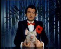 Pierre desproges et le cochon